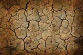 stock photo of drought  - Cracked earth background or texture - JPG