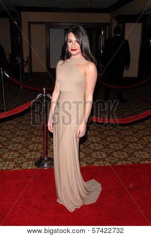 Lea Michele at the 62nd Annual DGA Awards - Arrivals, Hyatt Regency Century Plaza Hotel, Century City, CA. 01-30-10