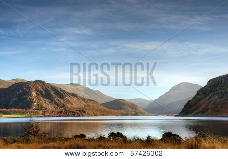 Grass on the shore of Ennerdale