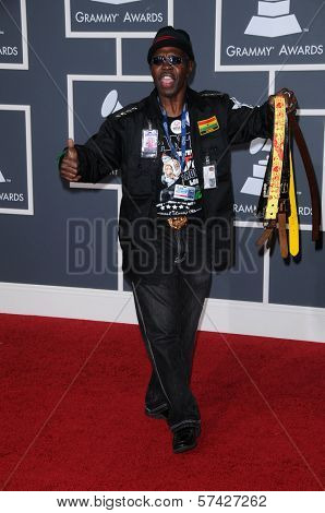 Larry Platt at the 52nd Annual Grammy Awards - Arrivals, Staples Center, Los Angeles, CA. 01-31-10