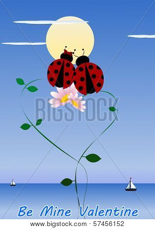 Two Ladybirds In Love