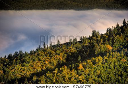 Fog Over A Valley