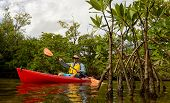 foto of canoe boat man  - man in a red kayak through the mangroves in a tropical destination - JPG