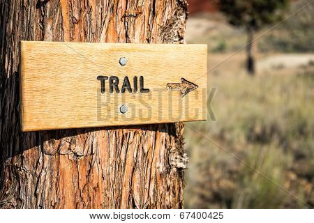 Trail Sign With Arrow In A National Monument