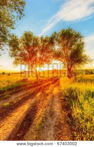 Sunset In Russian Countryside
