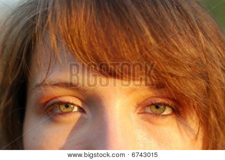 Women Green Eyes In Warm Sun