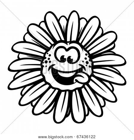Funny chamomile flower.