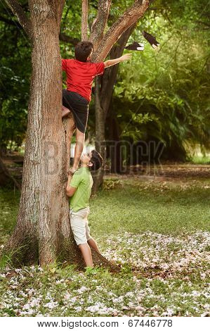 Two Children Helping And Climbing On Tree In Park