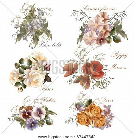Collection Of Vector Realistic Flowers In Watercolor Style