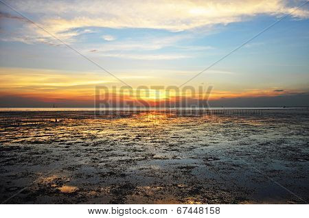 Sunset View From The Wetland Sea Coast