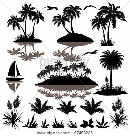 Tropical set with palms silhouettes