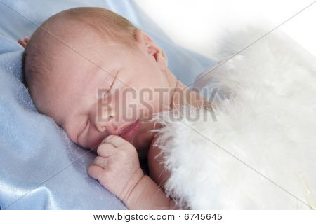 Newborn angel