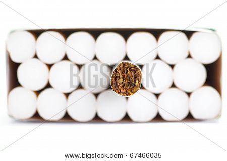 Tobacco in cigarettes