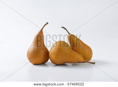 three selected fleshy pears