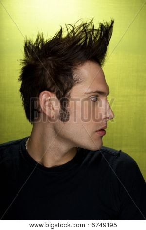 profile of a young attractive man with a mohawk and sideburns