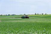stock photo of fertilizer  - tractor with nozzles fertilizing grown crops from diseases and pests - JPG