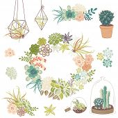picture of terrarium  - Wedding graphic set with succulents - JPG