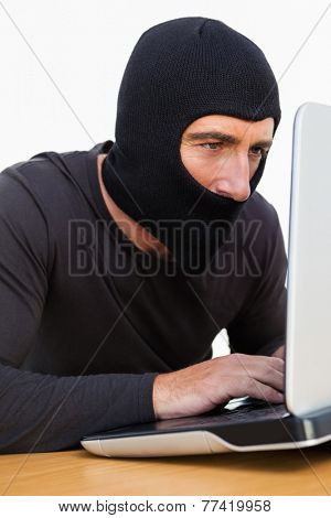 Burglar with balaclava using laptop on white background