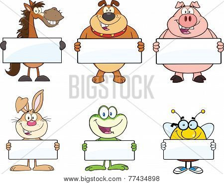 Animals Cartoon Character Holding A Blank Sign . Collection Set
