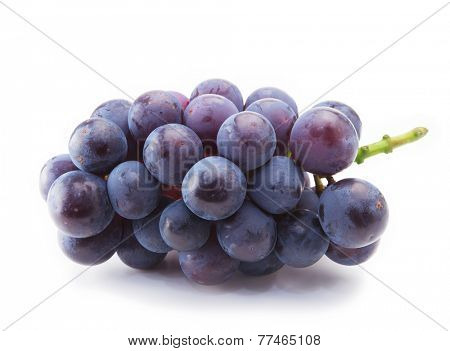 Kyoho grapes (giant mountain grapes) isolated on white.