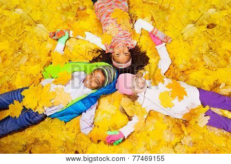 group of boy and girls in the maple leaves