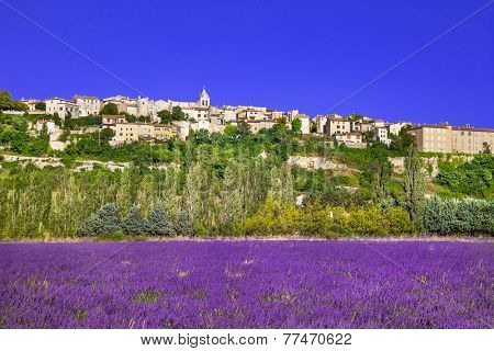 Sault town in Provence and blooming lavande fields