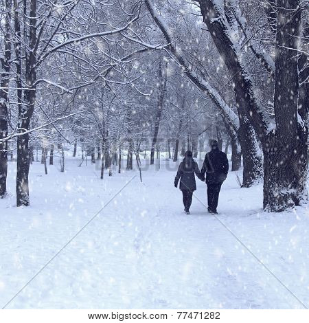 Lovers man and woman walking in the forest holding hands. Winter snows