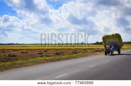 Tractor harvesting