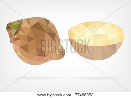 Low Poly Sapote fruit