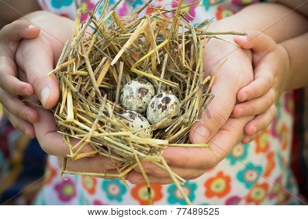 Adult And Child Holding Nest In Palms