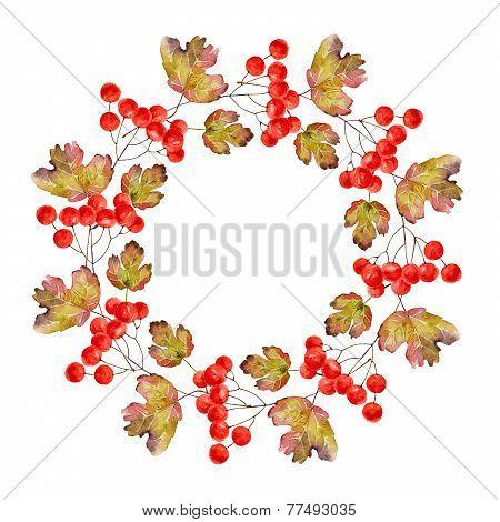 Wreath of viburnum