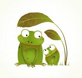 picture of baby frog  - Hand drawn watercolor style drawing of animals - JPG