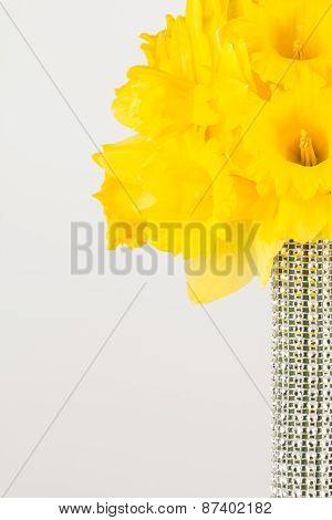 Yellow Trumpet Daffodil Bouquet