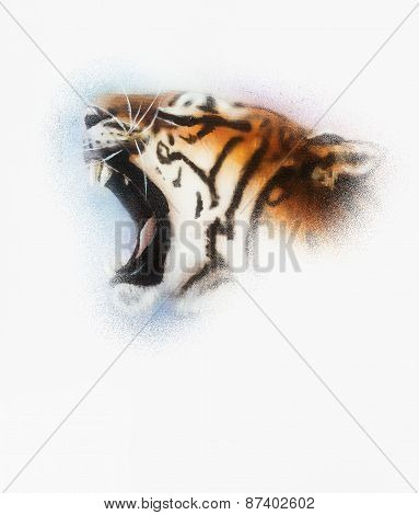 Tiger On White Background Wildlife Animals. on white background