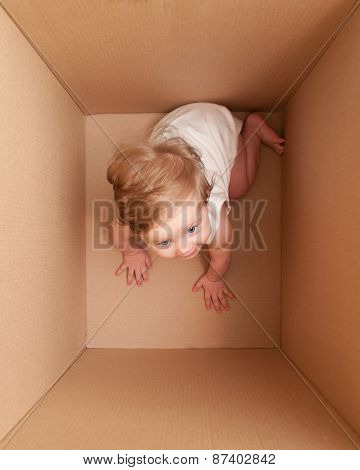 Little Gigl In The Box