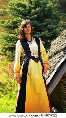 A beautiful girl in a historical costume posing in a wild landscape with a wooden log