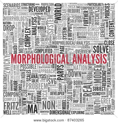 Close up Red MORPHOLOGICAL ANALYSIS Text at the Center of Word Tag Cloud on White Background.