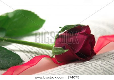 Red Rose And Book