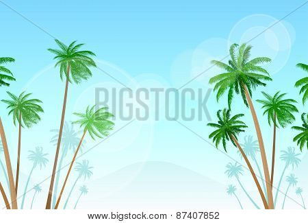 Green Palm Tree With Copy Space Over Blue