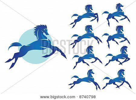 Bucking Bronco : The wild stallion blue color