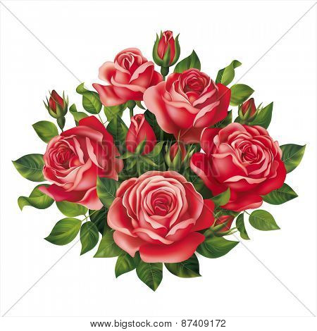 Red roses bouquet. Vector eps 10.