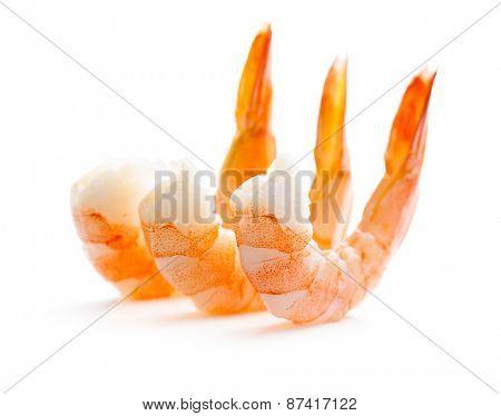 tasty prawns on white background