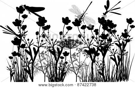 illustration with black flowers and grass isolated on white background