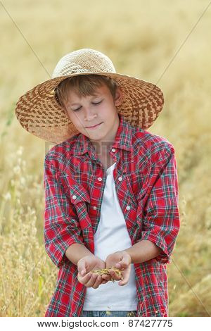 Portrait Of Teenage Farmer Boy Is Checking Oat Seeds In Cupped Palms At Harvest Time Field