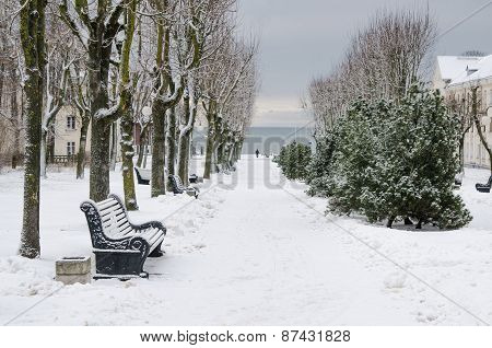Alley In The Park Of The City Of Sillamae In Winter