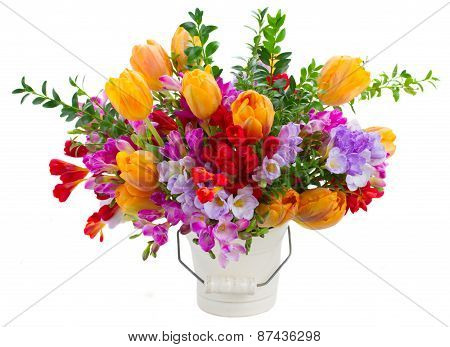 freesia and tulip flowers