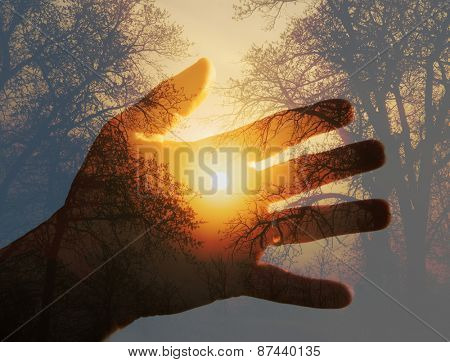 Double exposure with a sunrise behind trees with a hand