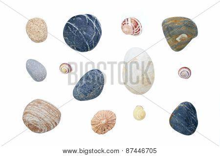 Sea Shells And Pebbles