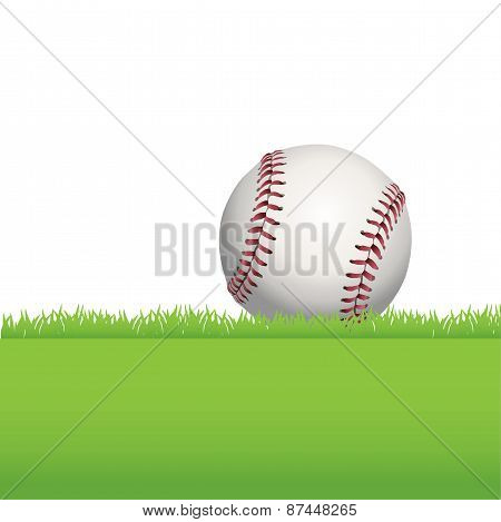Baseball Sitting On Green Grass Illustration