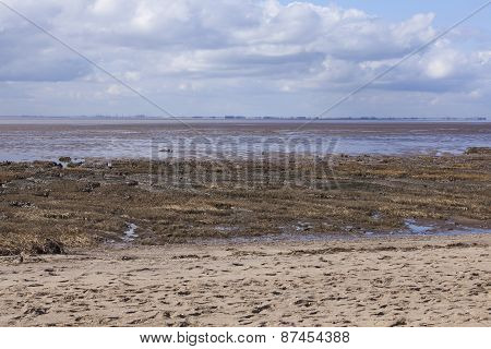 Mud Flats At Low Tide, Spurn Point Nature Reserve